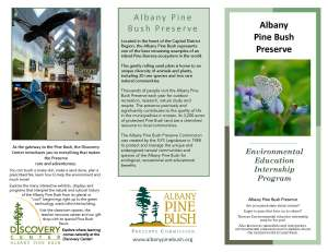 Albany Pine Bush_Page_1
