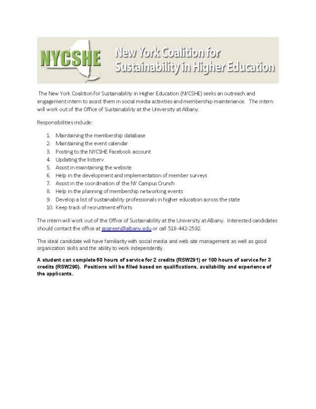 NYCSHE internship